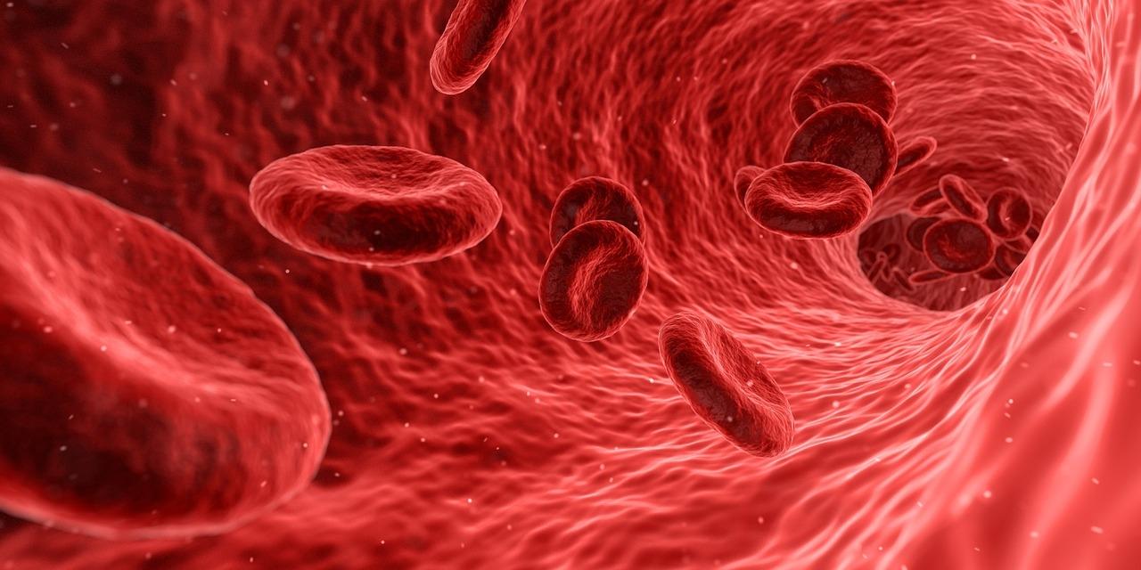 Autoimmune sygdomme